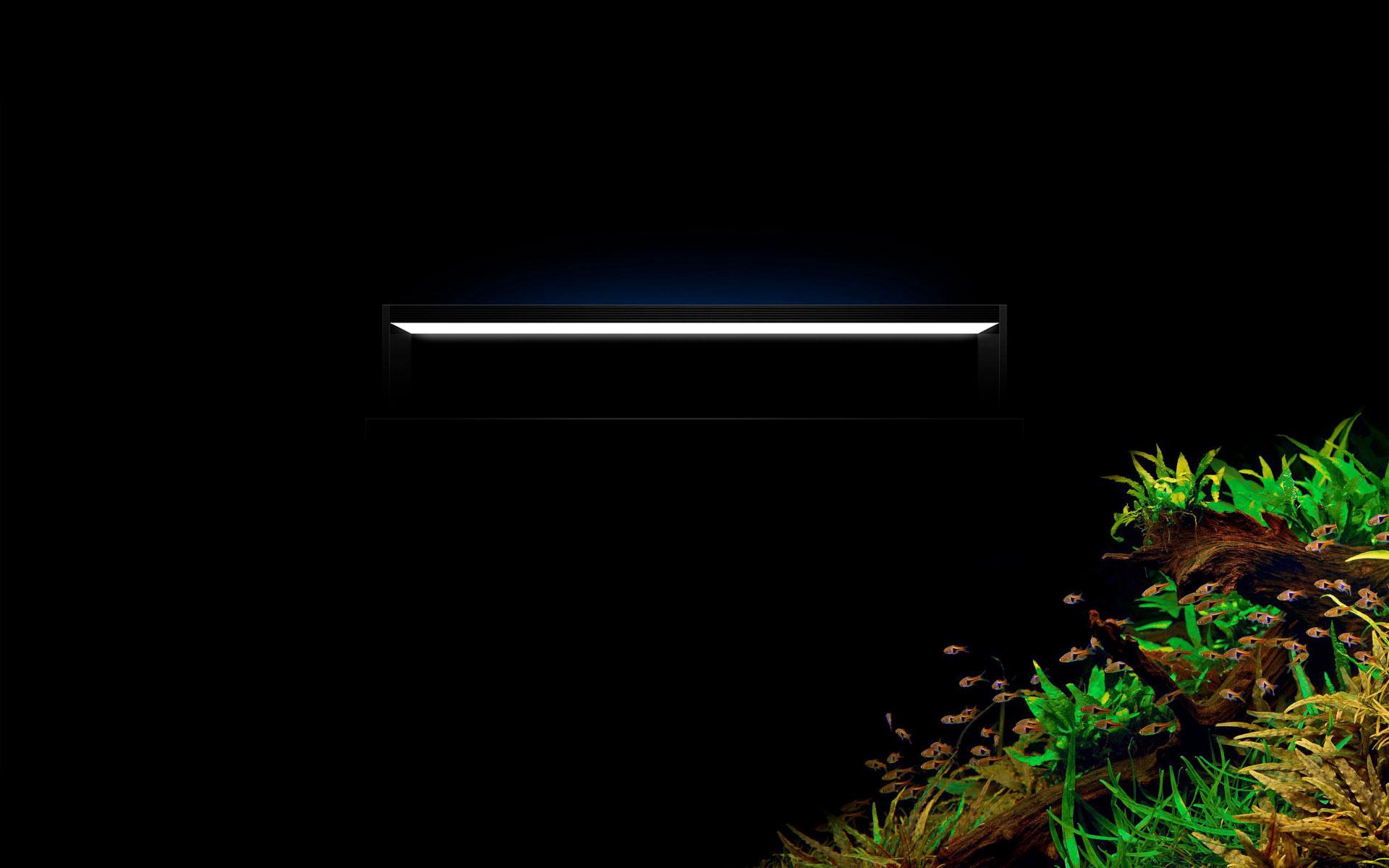 TWINSTAR-LIGHT C-Line